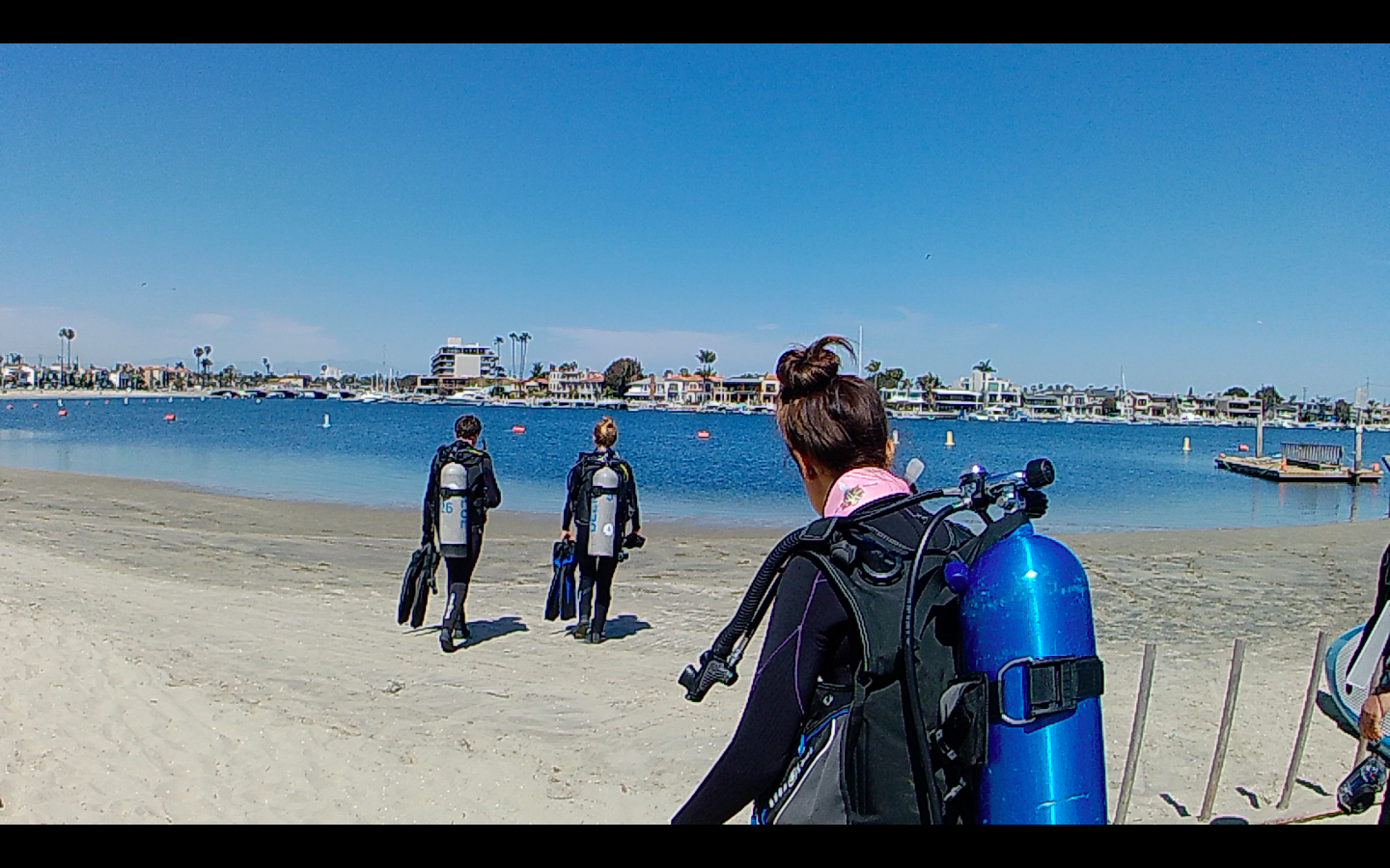 Seal Team is a Youth Scuba Diving Program at Deep Blue Swim Long Beach, CA.