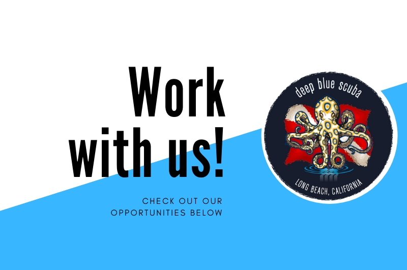 Job Openings at Deep Blue Scuba Long Beach