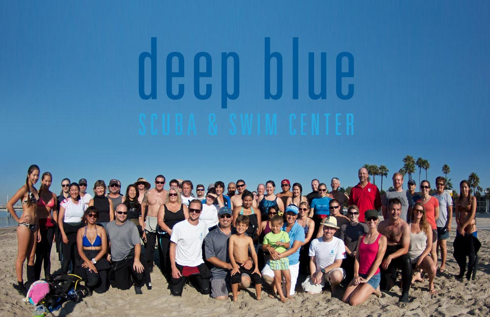 About Deep Blue